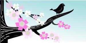 Bluebird Program in Binghamton @ Town of Chenango Community Room   Binghamton   New York   United States