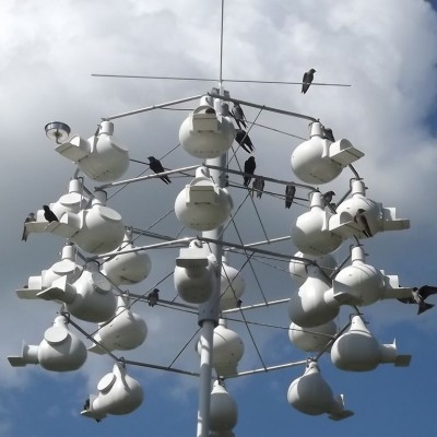 Purple Martin housing. Photo by Michael Mulqueen (*See notes)